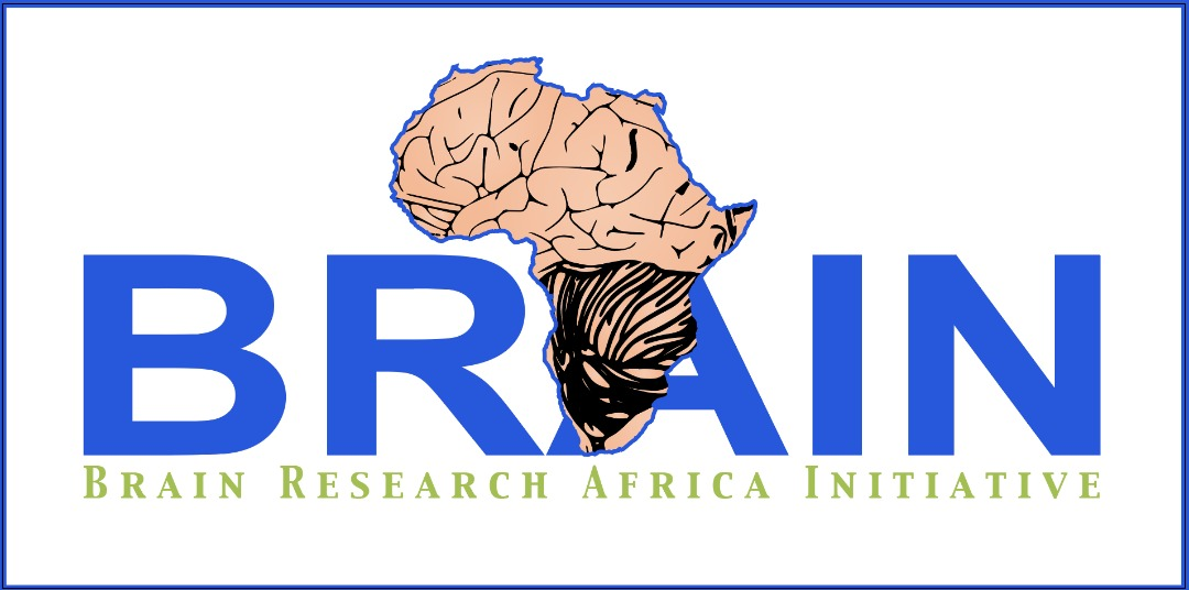 Brain Research Africa Initiative (BRAIN)